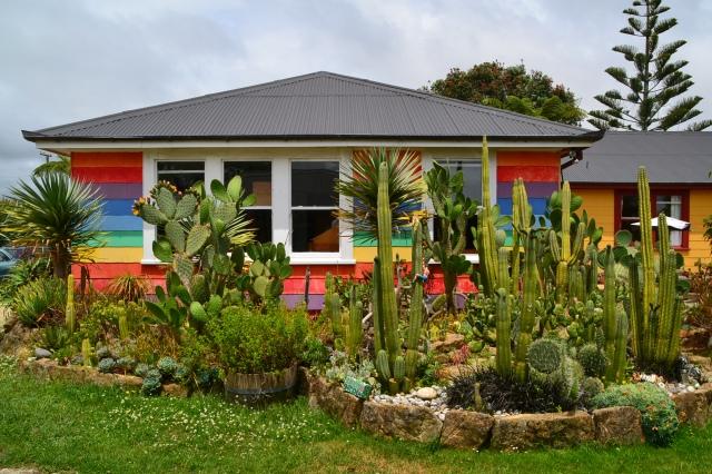 Cactus Garden (2)