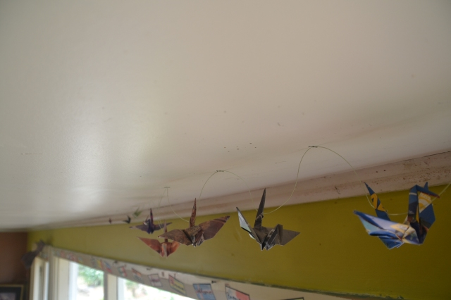 Rongo Birds (3)