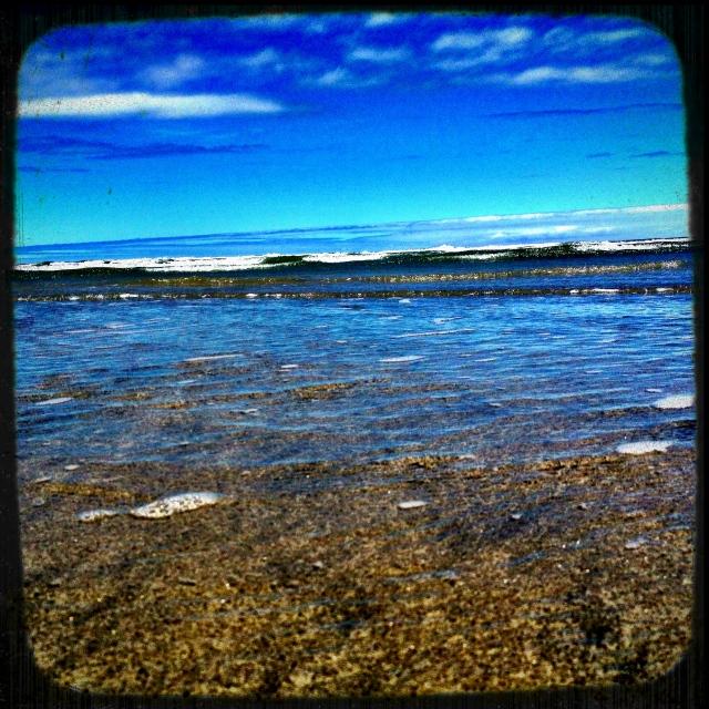The Ocean (1)