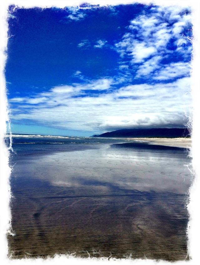 The Ocean (3)