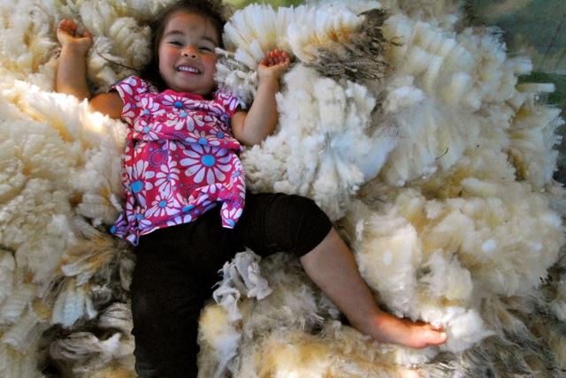 Diva Wool
