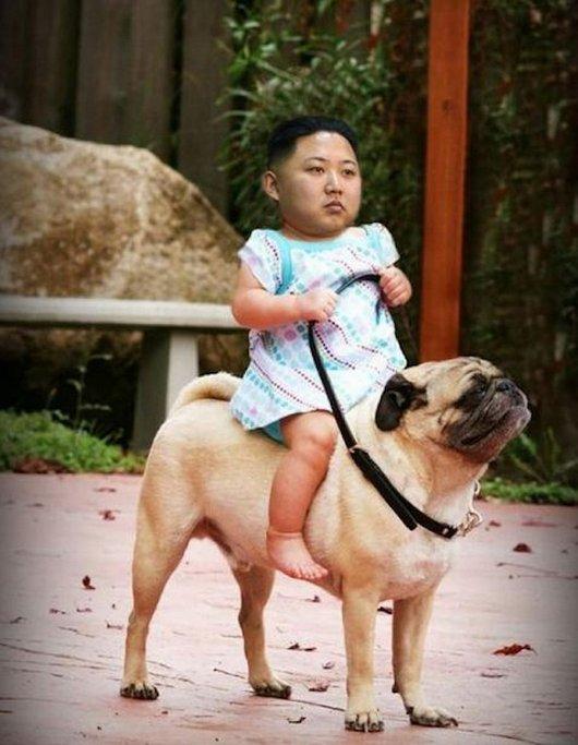 11-funniest-kim-jong-un-photoshop-images1.jpg.pagespeed.ce.nMTJLClteP