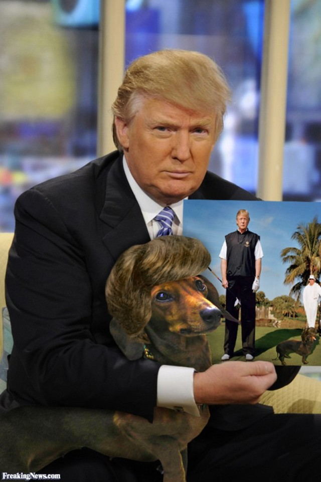 Donald-Trump-with-Dog-with-Matching-Hair--56203